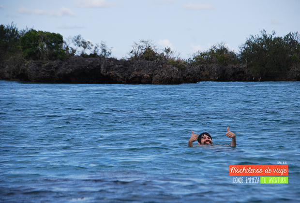 bano-manglares