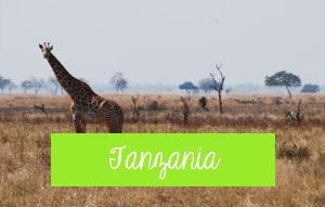 viajar por áfrica tanzania