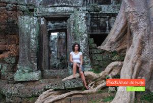 Banteay-Kdei-tree
