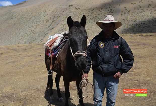 caballo_vinicunca
