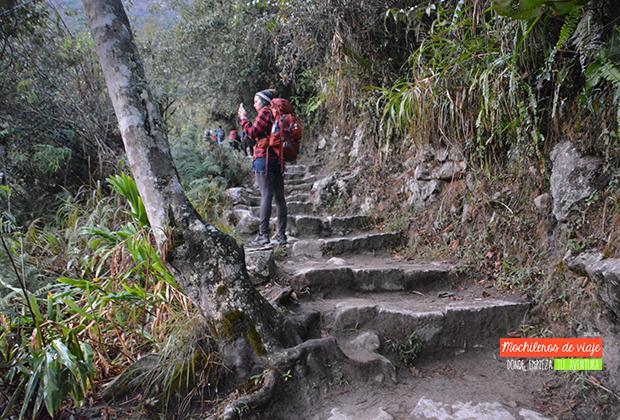 escaleras-subida-machu-picchu
