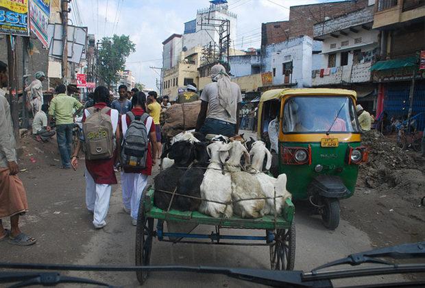 recomendaciones para viajar a india