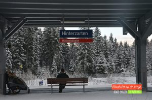 estación hinterzarten