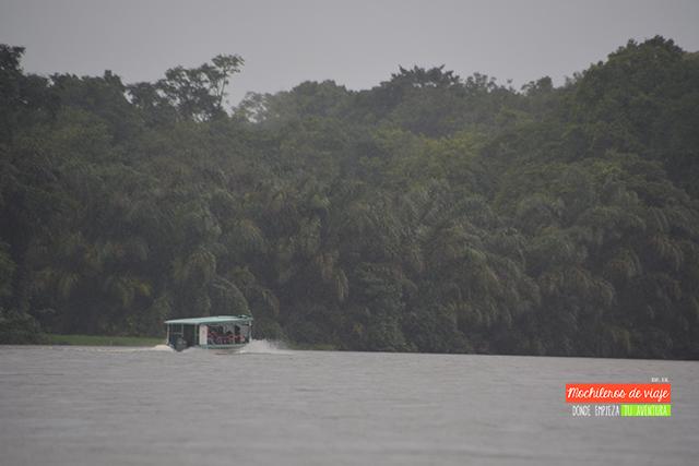 parques nacionales de costa rica tortuguero