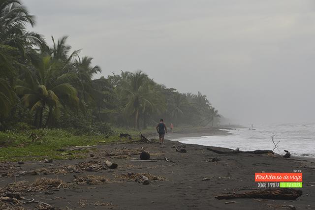 recomendaciones de viaje a costa rica playas de tortuguero