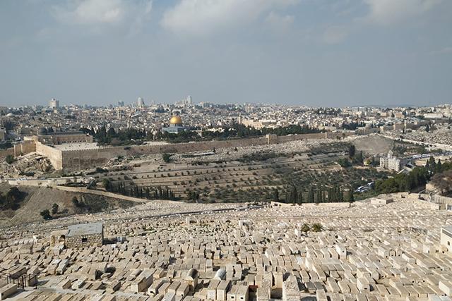 monte de los olivos y getsemani