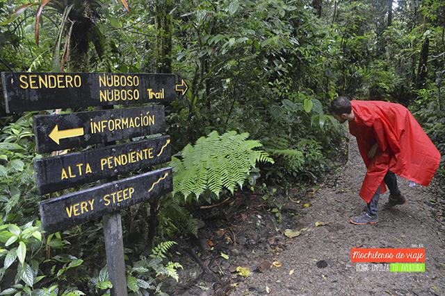 sendero bosque nuboso monteverde