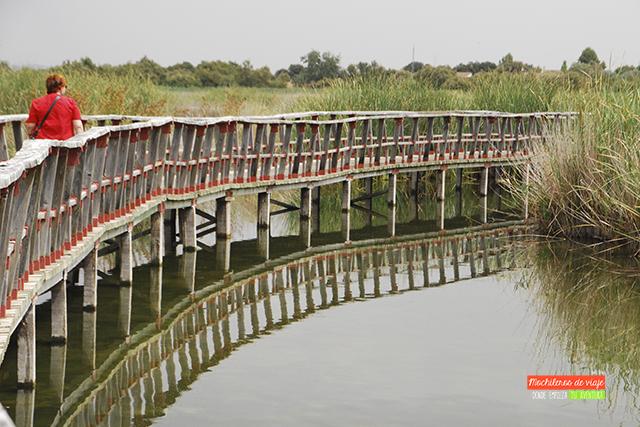 puente tablas