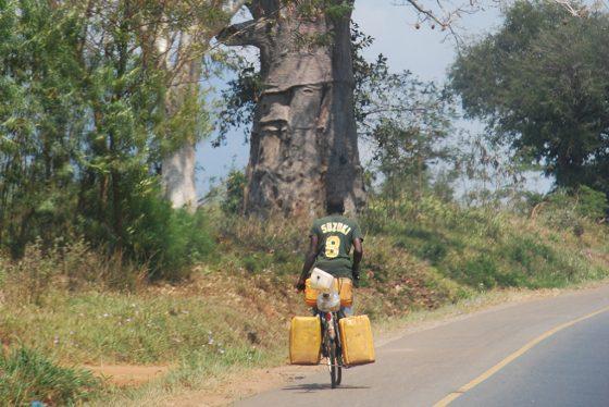 recomendaciones de viaje a tanzania