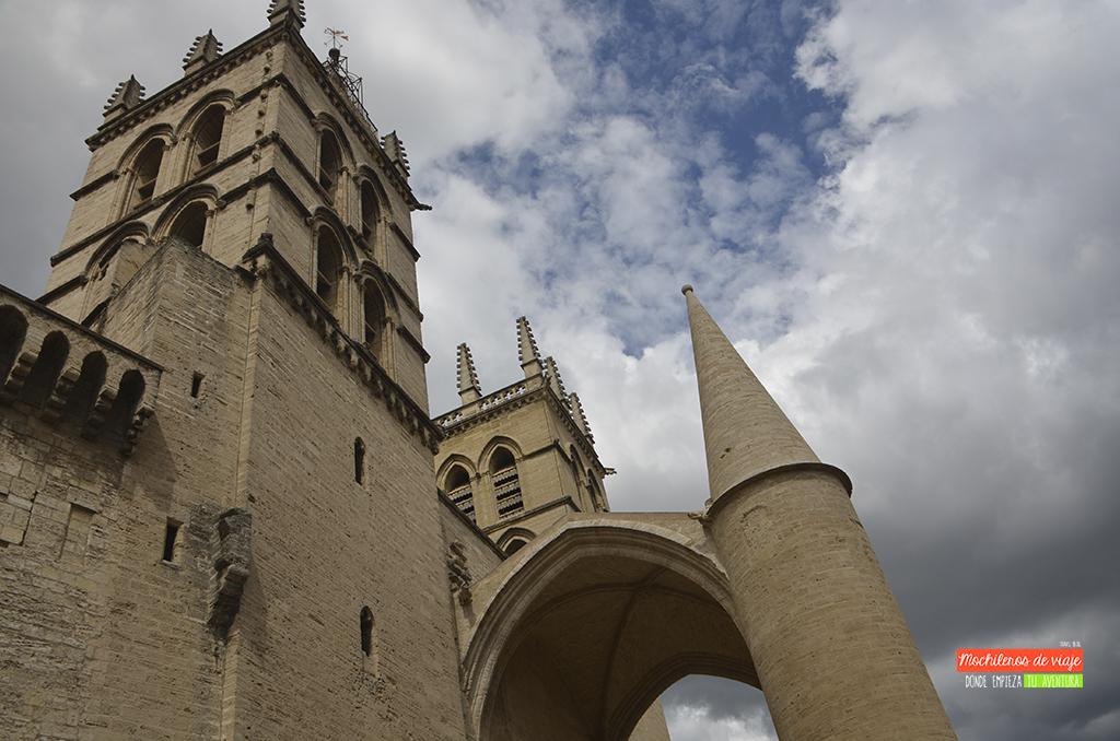 catedral de saint pierre montpellier