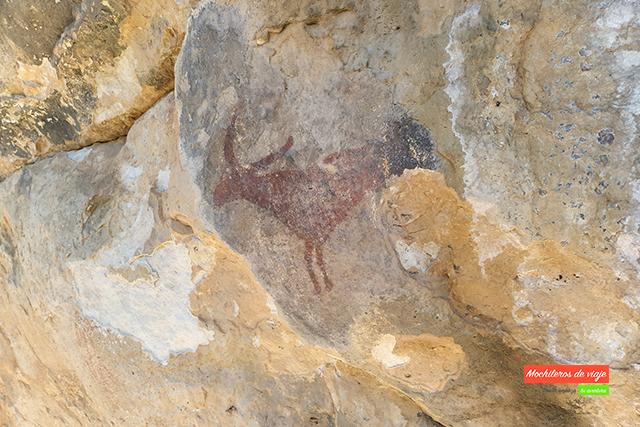 pintures rupestres